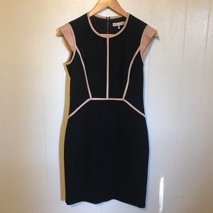 Rebecca Taylor Fitted Business Dress